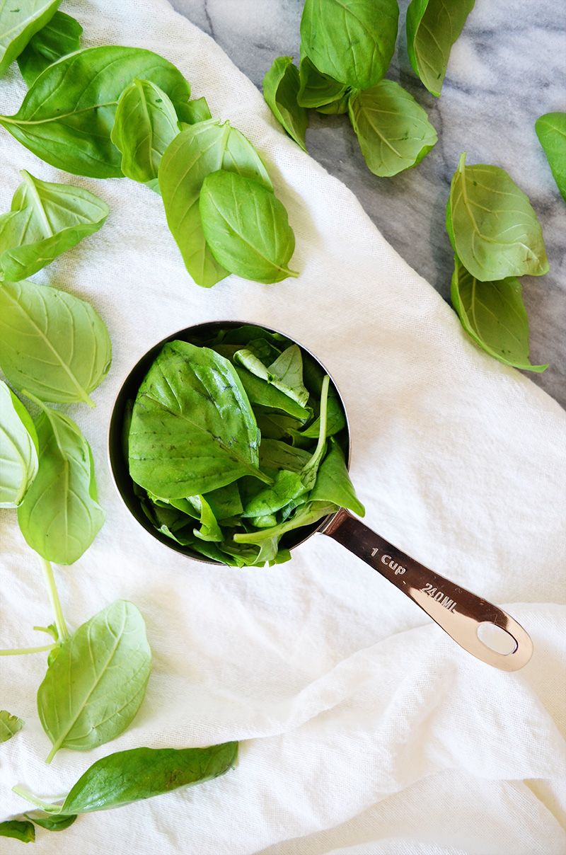Basil | Sprig and Flours