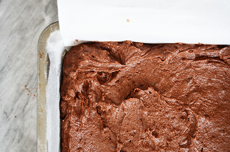 Fudgy Brownie Batter | Sprig and Flours