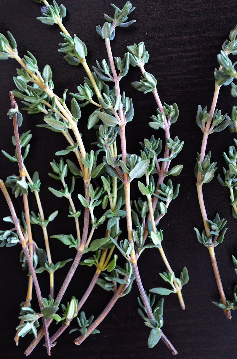 Thyme Sprigs   Sprig and Flours