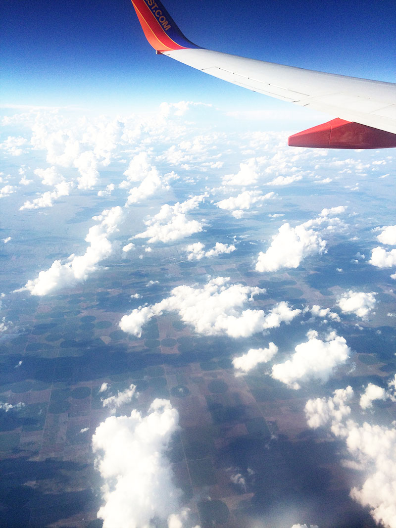 View from the Plane | Sprig and Flours