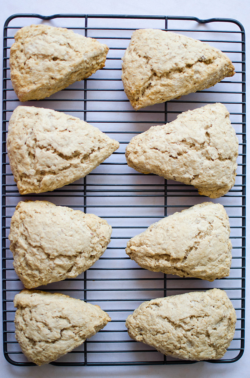 Maple Oat Scones | Sprig and Flours