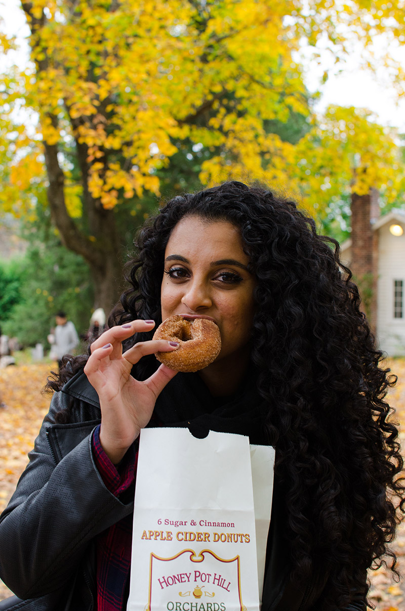 Isheeta and Apple Cider Donuts | Sprig and Flours
