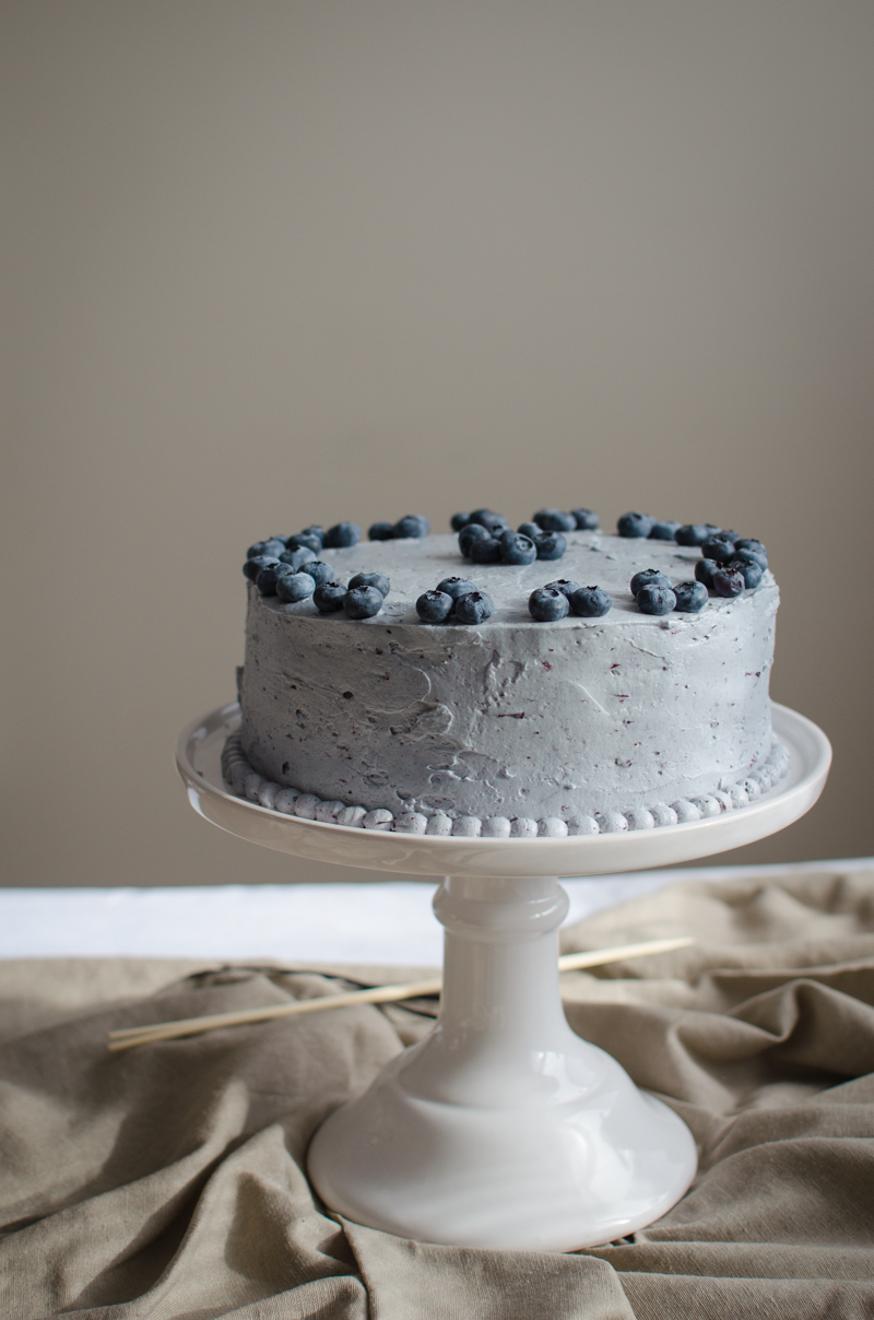 Blueberry Custard Cake | Sprig and Flours-22
