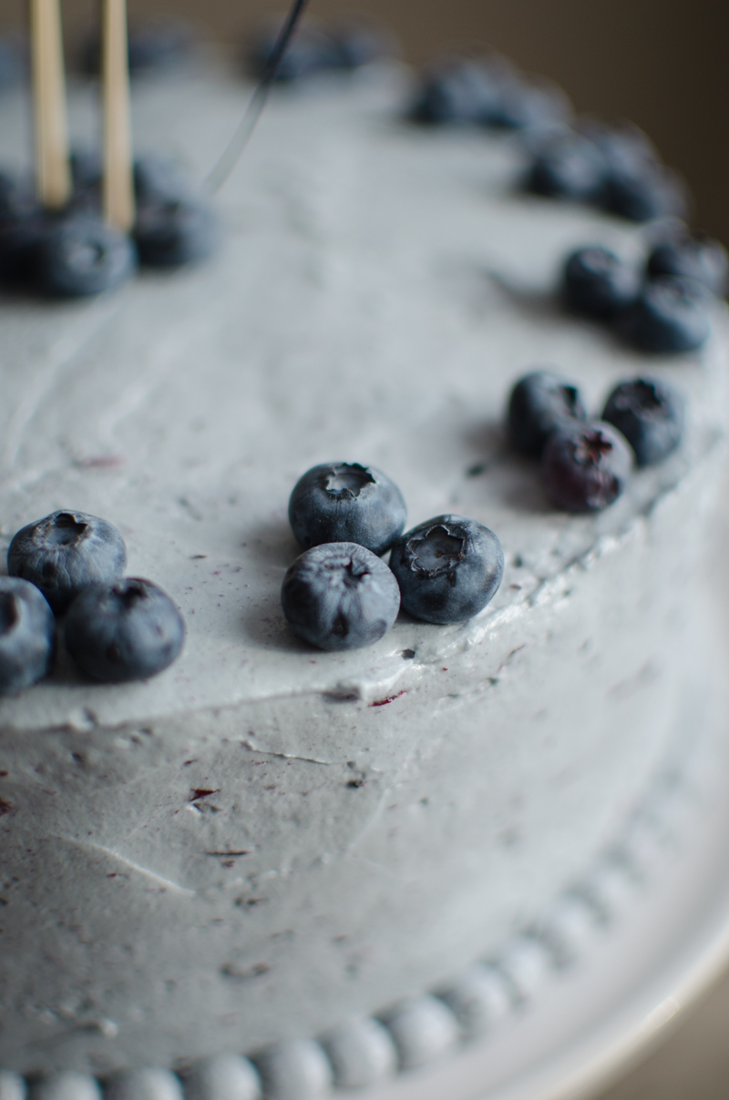 Blueberry Custard Cake | Sprig and Flours-39